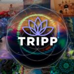 Dream Job Alert: Helping TRIPP Use Technology for Good